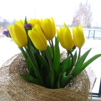 8 марта! :: ovatsya /Ирина/ Никешина