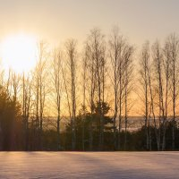 Зима. :: Александр Селезнев