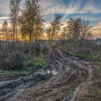 Дороги, дороги... :: Svetlana AS