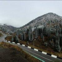 А дорога серою лентою вьется... :: Anna Gornostayeva