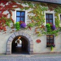 Цветущий  дом :: Николай Танаев