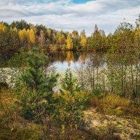 Цвет осени 2 :: Андрей Дворников