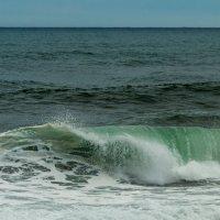 Wave :: алексей афанасьев