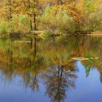 Отражение осени :: Ната Волга