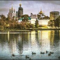 Осень у Новодевичьего монастыря. :: Алла ************