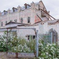 Старая мельница... :: Юлия Бабитко