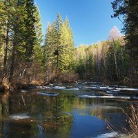 Горная река,уже замерзли берега,значит скоро к нам придет зимушка-зима... :: Александр Попов
