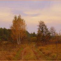 Осенняя акварель :: Natali8163 *