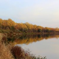 ☼-красовалась осень-золотой листвой,в зеркале речушки -под закат лесной- :: Владимир Суязов