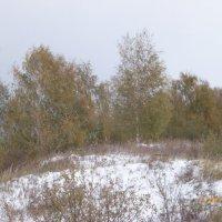 Снег в октябре :: шубнякова