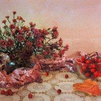 Последние цветочки из моего сада-огорода :: Павлова Татьяна Павлова