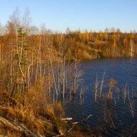 Озеро :: Денис Матвеев
