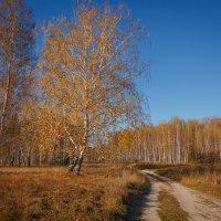 Морозное октябрьское утро :: Роман Царев