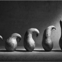 Эволюция :: Виктория Иванова