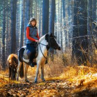 Осенняя прогулка 3 :: Дмитрий Соколов