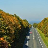 Осень.... :: Schbrukunow Gennadi