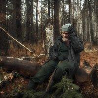 В осеннем лесу :: Александр Поляков
