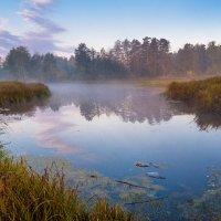 Осенним утром очарован... :: Юрий Морозов