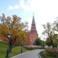 Александровский сад :: BoxerMak Mak