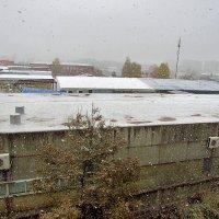 Снегопад. :: Yuriy V