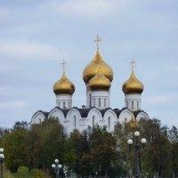 Золотые  купола  Успенского собора  в  Ярославле... :: Galina Leskova