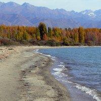 Осень :: aleks