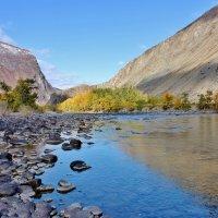 Долина реки Чулышман :: ирина )))