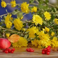 Последние цветы осени :: galina tihonova