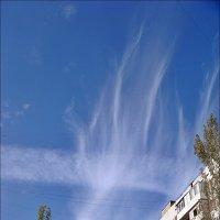 Небесный факел в октябре :: Нина Корешкова