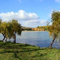 На берегу озера :: Nina Streapan