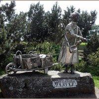 памятник Варваре Шантин :: Вера