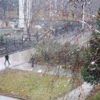 Снег кружится , летает , летает...23 10 2015г. :: Мила Бовкун