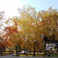 городская осень :: надежда логинова