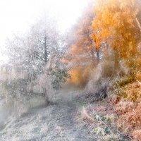 Морозный рассвет октября....3 :: Андрей Войцехов