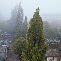 Almaty :: Sergey Baturin