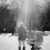 В осеннем свете. :: Lidija Abeltinja