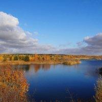 Озёрный пейзаж. :: Антонина Гугаева