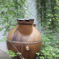 кувшин для дождевой воды :: elena manas