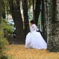 Осенние свадьбы :: Вера Моисеева