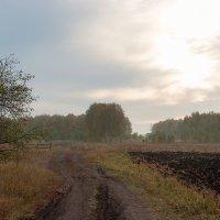 Окрестности Гардарики :: Роман Суханов