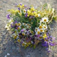 Букет из полевых цветов :: Катя Шерабурко