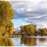 осень :: Андрей С.