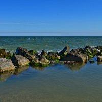Азовское море :: Татьяна Кретова