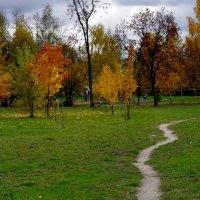 дорога в осень :: Арина Минеева