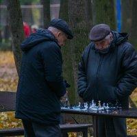 Шахматисты :: Александр Чехановский