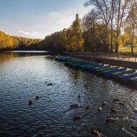 Осенний пейзаж в октябре :: Константин Фролов