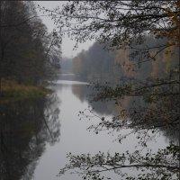 Октябрь... :: Наталья Rosenwasser