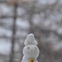 Ну это уж точно зима. :: cfysx