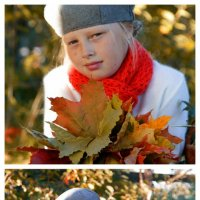 золотая осень :: Наташа Хюппенен
