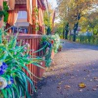 Осень. Краснодар. Солнечный парк.Вечерняя прогулка.25.10.15 :: Таня Харитонова